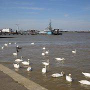 Gravesend Thames Riverside