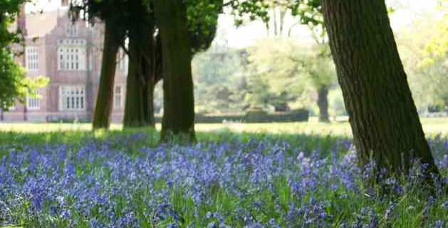 Cobham Hall & Gardens, Gravesham