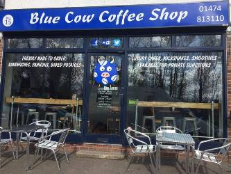 the Blue Cow Coffee Shop
